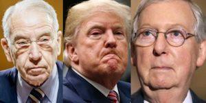 Senators and Trump